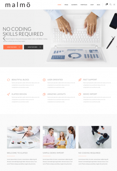 Malmo Biz WP FREEmium Theme Series