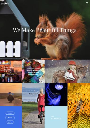 Sal Agency WP FREEmium Theme Series