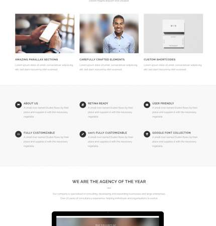 Bridge Biz WP FREEmium Theme Series
