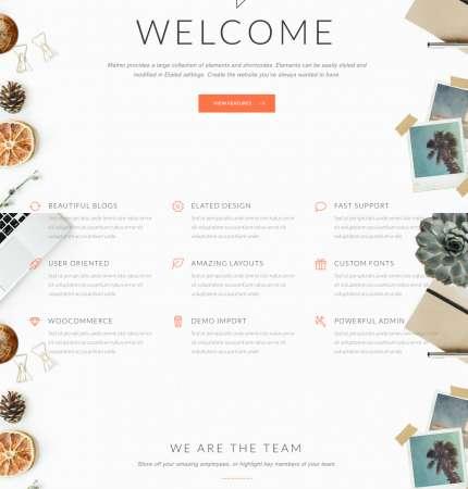 Malmo Agency WP FREEmium Theme Series